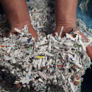 Shredded Newspaper at Cardboard Boxes NI